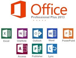 Microsoft Office Professional Plus Open License (OLP)