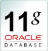 Oracle Enterprise Edition Processor License with Software Update License & Support